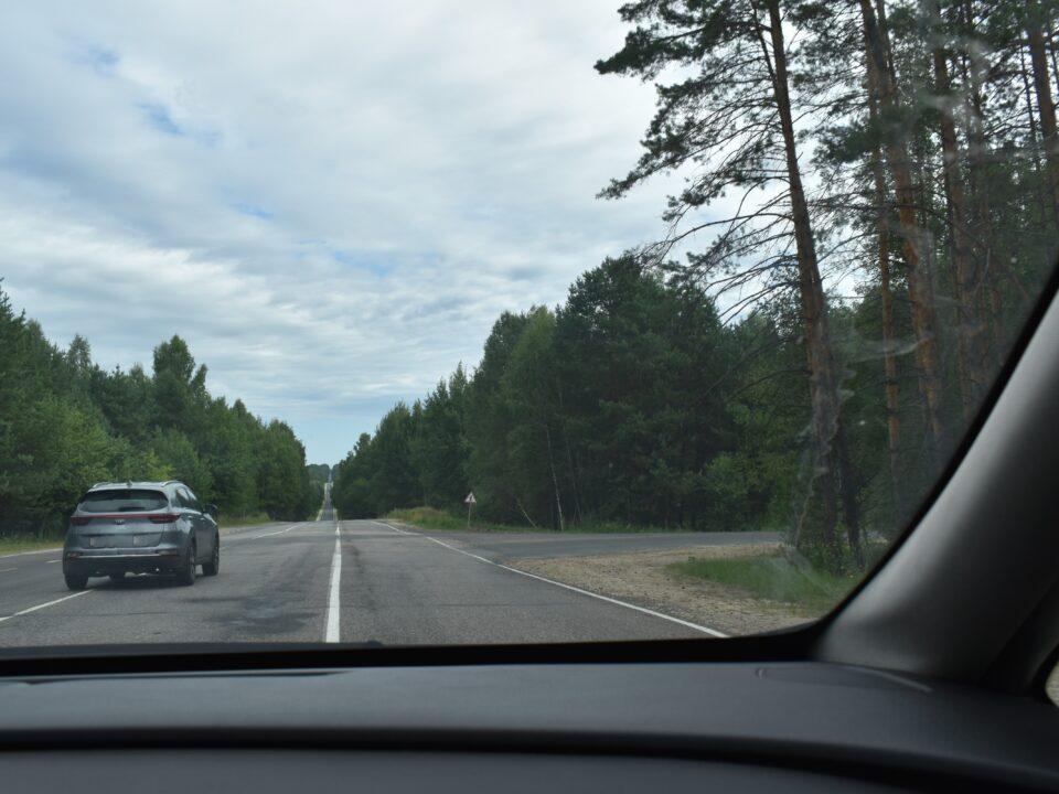 Дорога в Алешунино